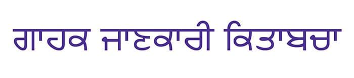 Punjabi info booklet button